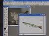 Photoshop CS2 use course photo composite 1