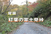 Foliage oze fujimi pass