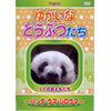 Yukaina their animal-Panda-bear-polar bear-