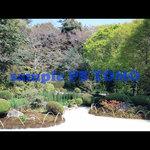 KYOTO garden no.0012