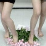 Flower Crash. File004