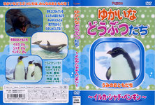 Yukaina their animal-dolphins, killer whales and penguins