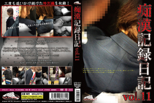 Molester record diary vol.11