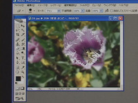 Photoshop CS2 use course blur