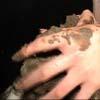 Hand Fetish Scene15