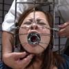 【アートビデオ】メスの牢獄 #014