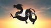 Web dragons and Dragon