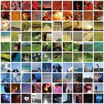 inosta / グラウンド パイロット (全3曲)