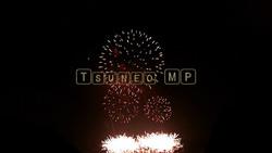 Firework Fireworks video