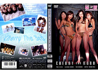 THE BORN CHERRY / cherry III