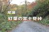 紅葉の尾瀬富士見峠